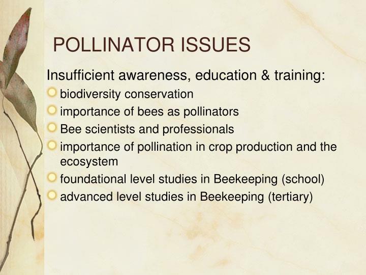 POLLINATOR ISSUES