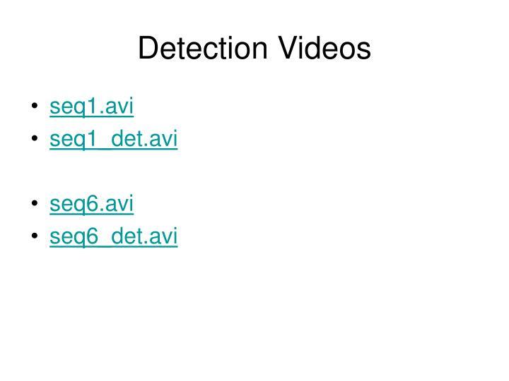 Detection Videos