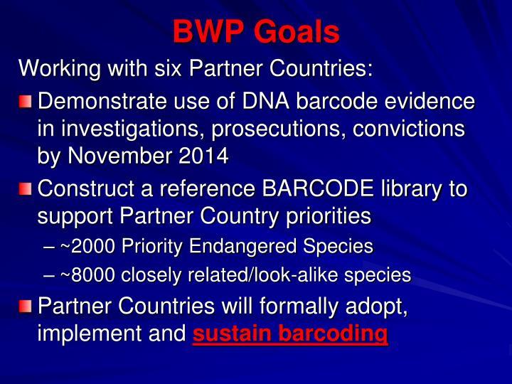 BWP Goals