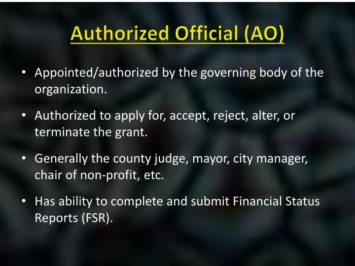 Authorized Official (AO)