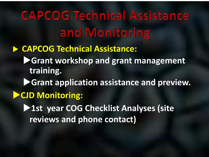 CAPCOG Technical Assistance