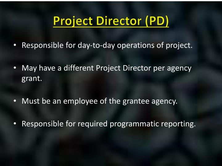 Project Director (PD)