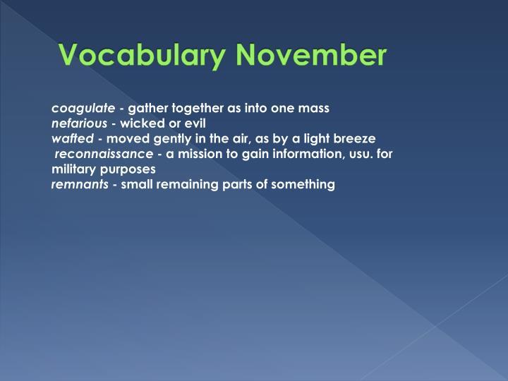 Vocabulary November