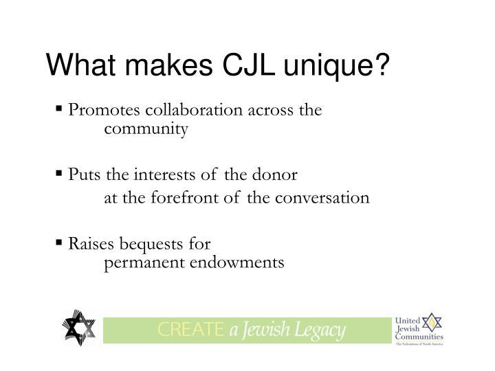 What makes CJL unique?