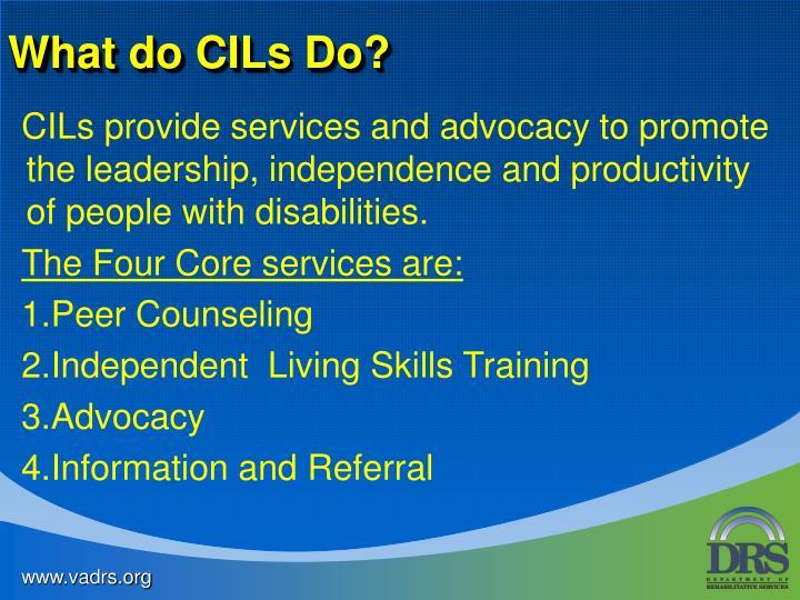 What do CILs Do?