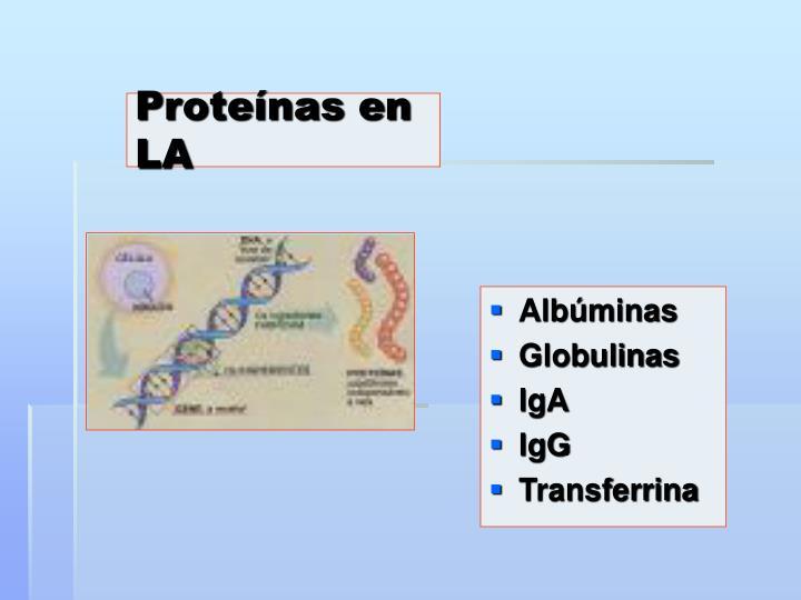 Proteínas en LA