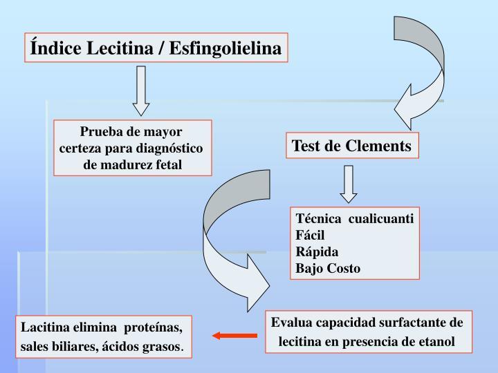 Índice Lecitina / Esfingolielina