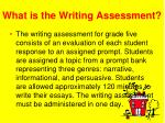 what is the writing assessment