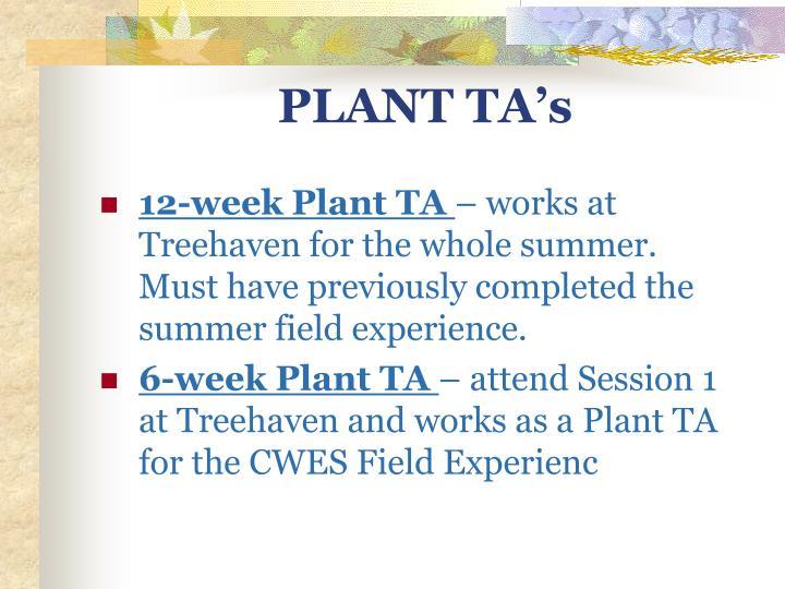 PLANT TA's