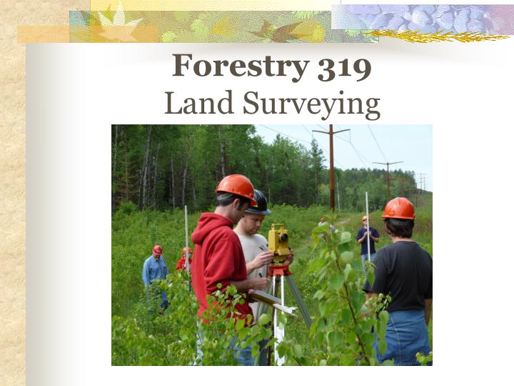 Forestry 319