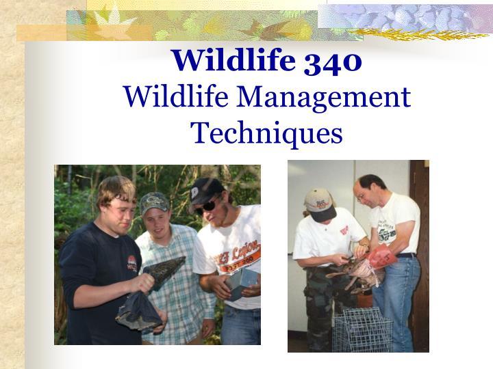Wildlife 340