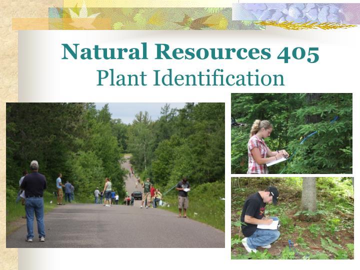 Natural Resources 405