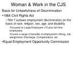 woman work in the cjs2