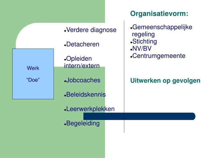 Organisatievorm:
