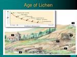 age of lichen