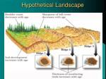 hypothetical landscape