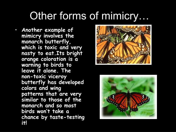 Other forms of mimicry…
