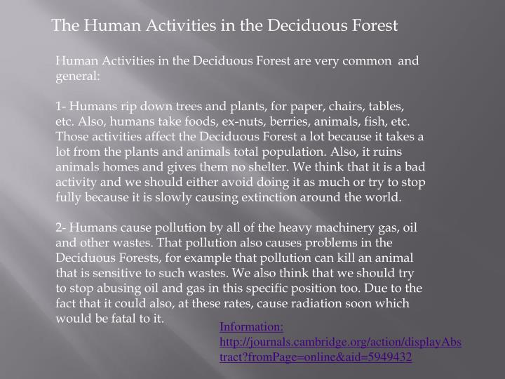 The Human Activities in the Deciduous Forest
