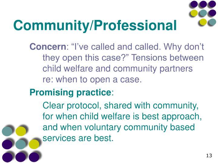 Community/Professional