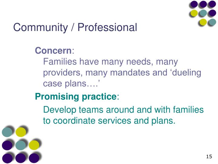 Community / Professional