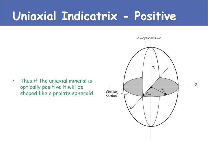 Uniaxial Indicatrix - Positive
