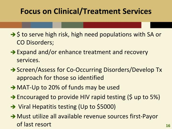 Focus on Clinical/Treatment Services