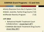 samhsa grant programs cj and vets