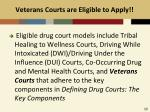 veterans courts are eligible to apply