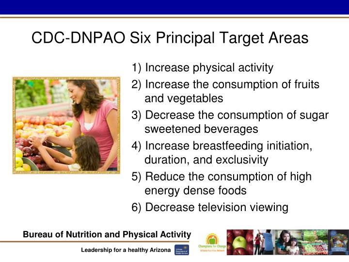 CDC-DNPAO Six Principal Target Areas
