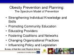obesity prevention and planning the spectrum model of prevention