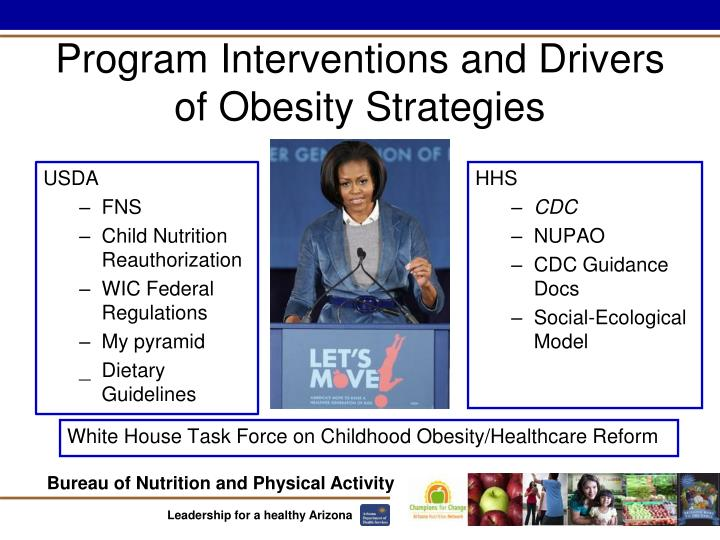 Program Interventions and Drivers of Obesity Strategies
