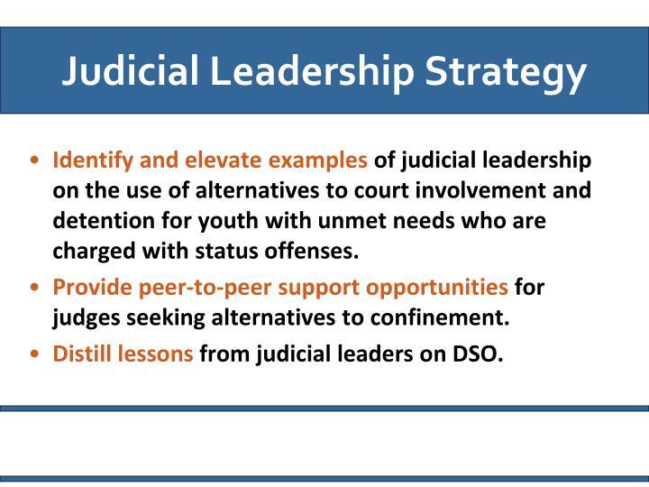 Judicial Leadership Strategy