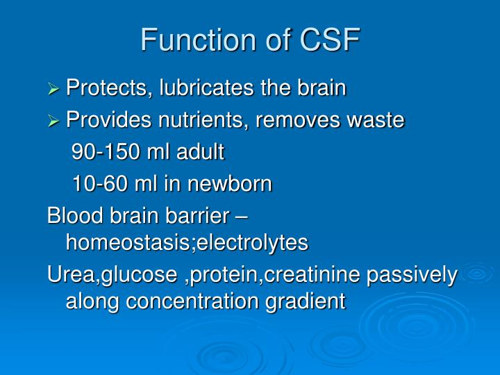 Function of CSF