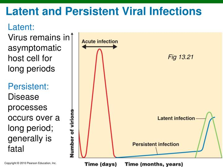 Latent and Persistent Viral Infections