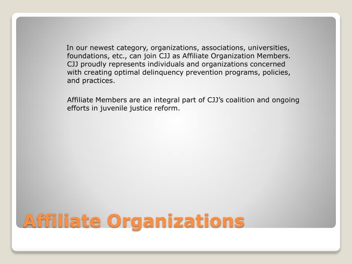 In our newest category, organizations, associations, universities, foundations, etc., can join CJJ as Affiliate Organization Members. CJJ proudly represents individuals and organizations concerned with creating optimal delinquency prevention programs, policies, and practices.