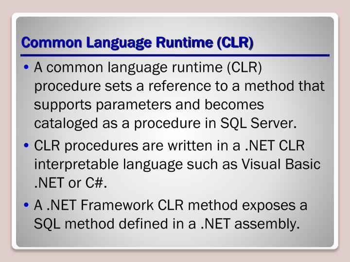 Common Language Runtime (CLR)