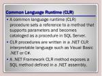 common language runtime clr