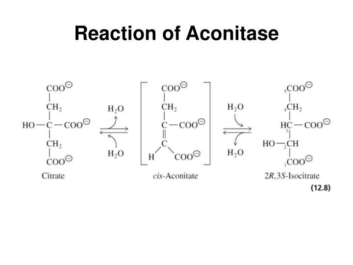 Reaction of Aconitase