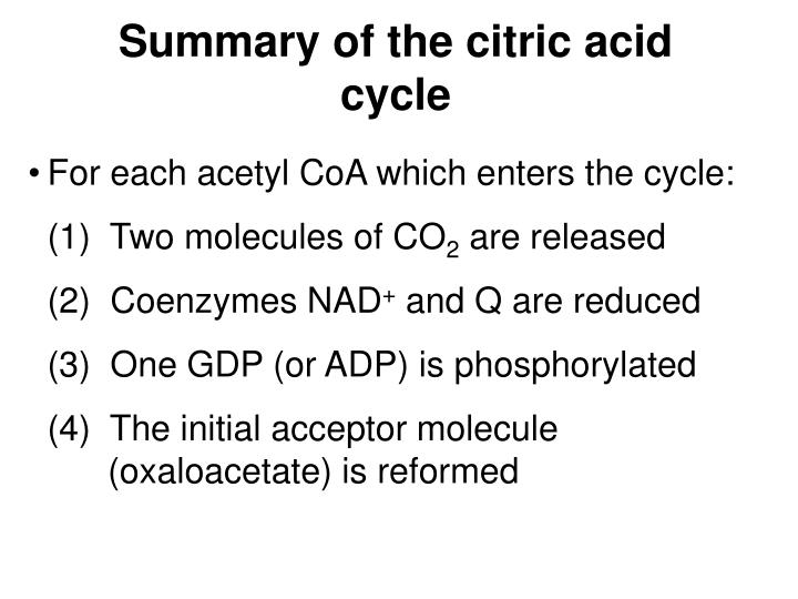 Summary of the citric acid cycle