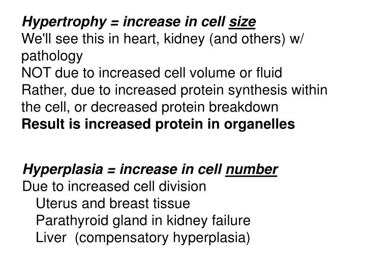 Hypertrophy = increase in cell