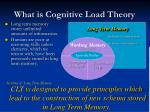what is cognitive load theory1