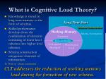 what is cognitive load theory2