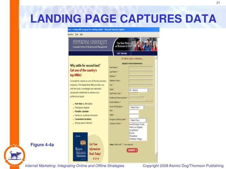 LANDING PAGE CAPTURES DATA