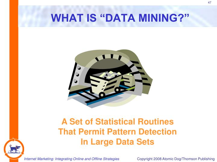 "WHAT IS ""DATA MINING?"""