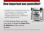 how important was penicillin1