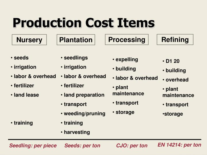 Production Cost Items