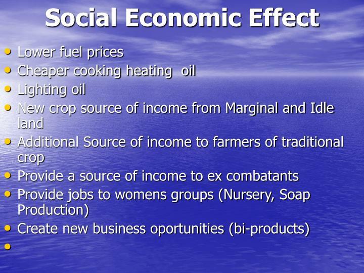 Social Economic Effect