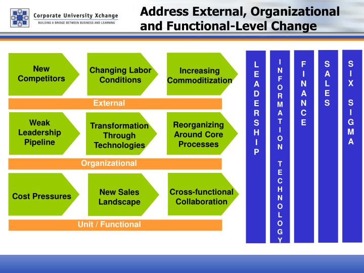 Address External, Organizational and Functional-Level Change