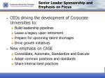 senior leader sponsorship and emphasis on focus