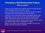 changing a well entrenched culture what is culture